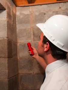 Termite Inspection Raleigh, Durham, Chapel Hill, Cary.